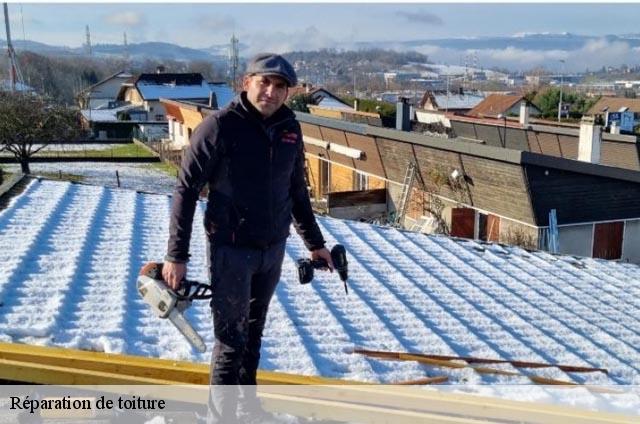 r paration de toiture brindas t l. Black Bedroom Furniture Sets. Home Design Ideas